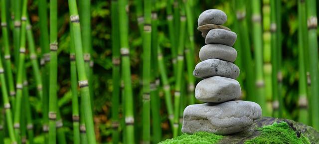 kameny u bambusu